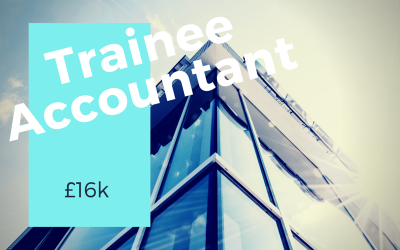 Trainee Accountant