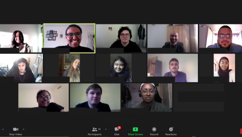David and his cohort in a zoom meeting